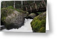 River Bridge Greeting Card