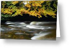 River Camcor Greeting Card