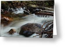 River Detail Greeting Card