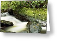 River Flowing Through A Forest, Torc Greeting Card