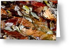 River Leaves Greeting Card by LeeAnn McLaneGoetz McLaneGoetzStudioLLCcom