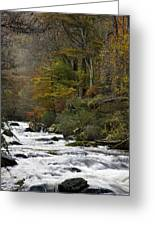 River Lyn In Autumn Greeting Card