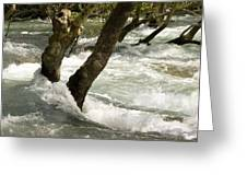 River Manavgat In Flood Greeting Card by Bob Gibbons