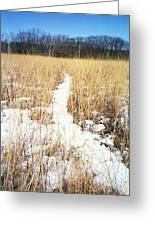 River Of Snow Greeting Card