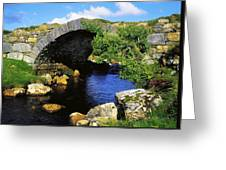River Owenwee, Poisoned Glen, Co Greeting Card