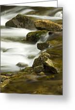 River Rapid 6 Greeting Card