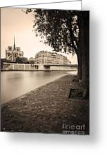 River Seine And Cathedral Notre Dame Greeting Card