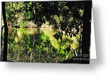 River Through The Trees Greeting Card