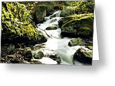 River With Rocks In The Forest Greeting Card