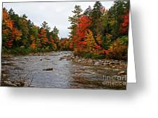 Rivers Run Through It..fall Brilliance Greeting Card