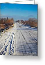 Road In Winter Greeting Card by Gabriela Insuratelu