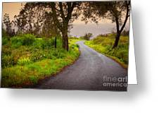 Road On Woods Greeting Card by Carlos Caetano