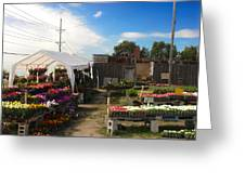 Road Side Stand Greeting Card