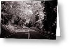 Road Through Autumn - Black And White Greeting Card