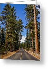 Road Through Lassen Forest Greeting Card