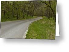 Road Thru Woods Spring 1 Greeting Card