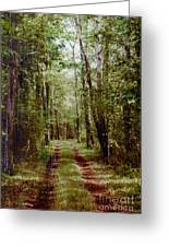 Road To Anywhere Greeting Card
