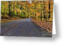 Road To Autumn Greeting Card
