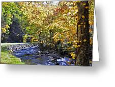 Road To Cades Cove Greeting Card