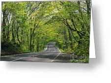 Road To Gatlinburg Tn Greeting Card by Elizabeth Coats