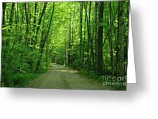Road To Jasper Woods Greeting Card