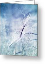 Roadside Blues Greeting Card by Priska Wettstein