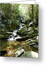 Roaring Creek Falls - II Greeting Card by Joel Deutsch