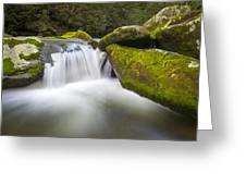 Roaring Fork Great Smoky Mountains National Park - The Simple Pleasures Greeting Card by Dave Allen