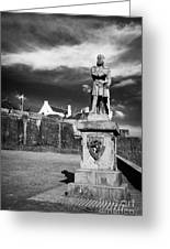 robert the bruce statue at stirling castle Scotland UK Greeting Card