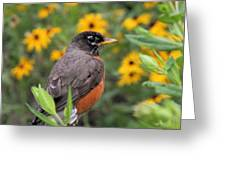 Robin Among Flowers Greeting Card