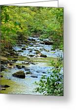 Rock Creek Bed Greeting Card