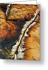Rock Detail, Killarney Provincial Park Greeting Card