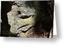 Rock Face Greeting Card by Joel Deutsch