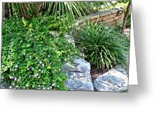 Rock Garden Beauty Greeting Card
