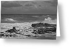 Rock Reef Greeting Card