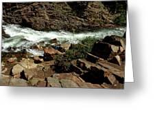 Rock Rush Glen Alpine Creek Greeting Card