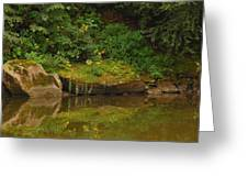 Rockin Flora Greeting Card