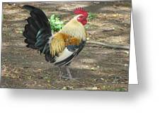 Rockin Rooster Greeting Card
