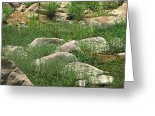 Rocks And Grass At Amidon Conservation Area Missouri Greeting Card