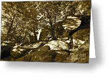 Rocks And Trees 1 Sepia Greeting Card