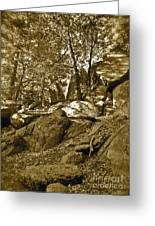 Rocks And Trees 2 Sepia Greeting Card