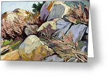 Rocks And Weeds Greeting Card