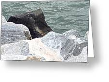 Rocks Chessapeake Bay Digital Greeting Card