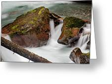 Rocks Of Avalanche Gorge Greeting Card