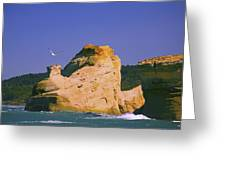 Rocky Coast Of Cape Kiwanda State Greeting Card