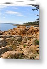 Rocky Coast Of Maine Greeting Card