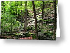 Rocky Forest Of Chatfield Greeting Card