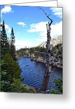 Rocky Mountain National Park1 Greeting Card
