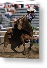 Rodeo Competitor In A Steer Riding Greeting Card by Chris Johns