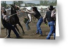 Rodeo Wild Horse Race Greeting Card